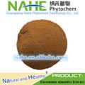 100% natural eucommia extrato com 10%- 98% de ácido clorogênico