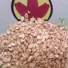 interest buy oat flake