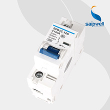 SAIP/SAIPWELL High Quality New 1 Pole 125/220V 100A Waterproof Electrical DC MCB miniature Circuit Breaker