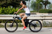 seagull GL-- electric cross bike,electric dirt bike 500w, electric bike 3 wheel for adults,battery for electric bike