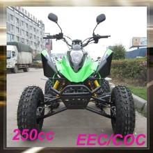 MC-381 cheap 250cc cool sports atv