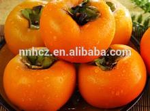 naturale cachi freschi frutti per la vendita