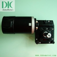 worm gear motor 12V24V 250W with high torque low rpm high voltage dc motor