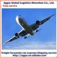Baggio excelente de servicios de logística de logística de documentación