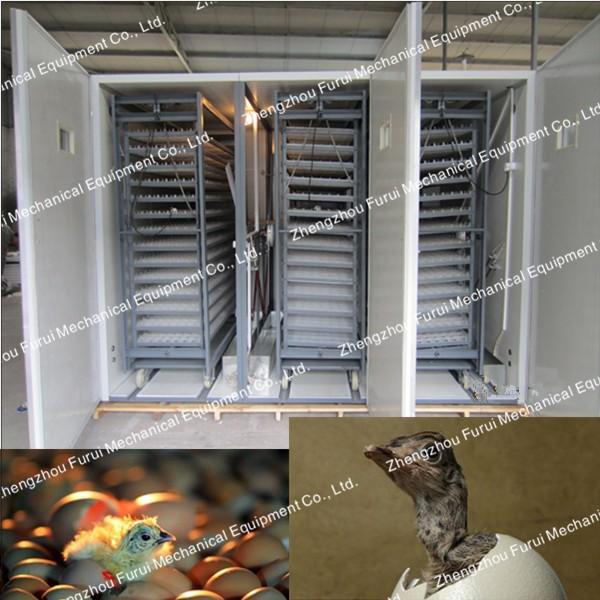 яйца автоматический инкубатор/яйцо инкубатор