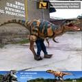 Mi Dino - barney carnaval traje de la historieta