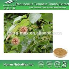 Hunan Nutramax Supply-Ranunculus Ternatus Thunb Extract/Ranunculus Ternatus Thunb Extract Powder