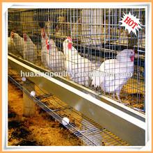 Uganda avesdecapoeira fazenda automático da galinha da camada gaiola/aves poedeiras/gaiolas em bateria galinhas poedeiras
