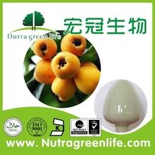 Ursolic acid/Loquat Leaf Extract/bear fruit acid extract