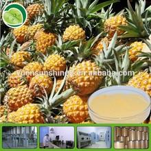 dried mango pineapple fruits powder