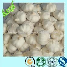 2014 Fresh Mesh Bags For Garlic
