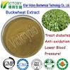 manufacturer supply 100% natrue Tartary Buckwheat Extract