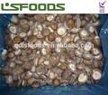 congelado iqf china de la seta shiitake de exportación para los precios de mercado para el hongo