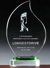 professional factory acrylic trophy award