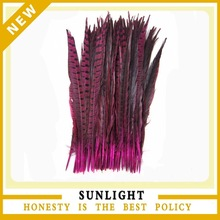 Fashion Dyed Ladies' Amherst Pheasant feather Tails for Sale