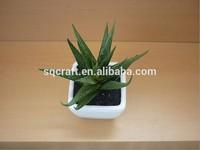 Best Exporting Factory Direct Sell Decorative Mini Succulent Plant Artificial Zebra Aloe Bonsai Potted