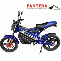 PT-E001 Popular Europe Road Legal Folding Electric Mini Motorcycle