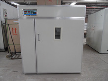 CE approved completely automatic incubator using coal ,electricity two heating method