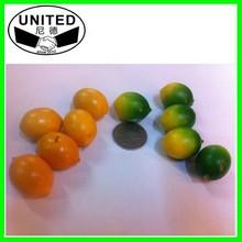 Manufacturer of plastic Artificial fruit mini lemon