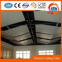 Project semi-transparent uv resistant clear pvc ceiling tiles with 15-year warranty for swimming pools