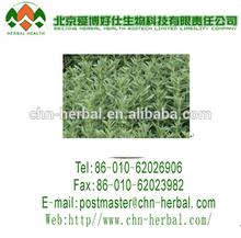 100% Natural Food Grade Stevia Sweetener