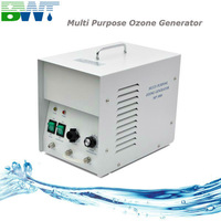 3G CE approved portable ozone generator with air compressor