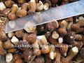 китай замороженных белый гриб
