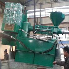 Stable performance hemp seed oil press with long durability