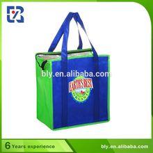 Unique Design 600D Polyester Cooler Food Bag