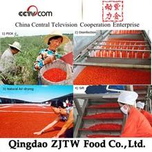 New Xinjiang High Quality Goji Berry Extract
