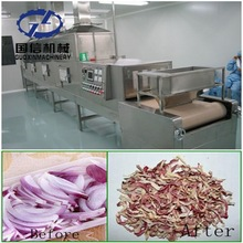 304 Stainless steel onion microwave drying machine