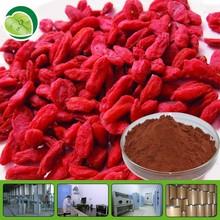 high standard lycium barbarum wolfberry fruit p.e polysaccharide