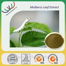 Free samples DNJ ,HACCP KOSHER GMP Certified mulberry leaf extract 1-DNJ , Bulk in stock DNJ powder