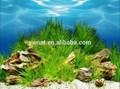 Waterproof Plastic Aquarium Background Aquarium Painting Pictures