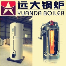 Small type gas fired half ton boiler