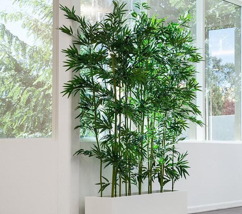 gro handel indoor k nstlichen bambus f r wohnzimmer dekoration kunststoff lucky bamboo. Black Bedroom Furniture Sets. Home Design Ideas