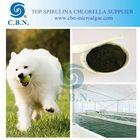 animal feed additives natural spirulina