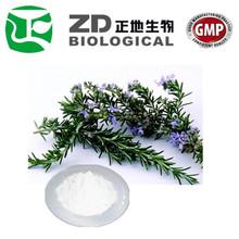 rosemary extract powder Carnosic acid / rosemary oleoresin