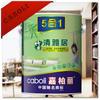 Caboli spray interior emulsion wall coating