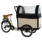 family three wheel electric scooter cargo trike