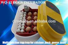 Chicken,Bird,Emu,Ostrich,Turkey,Goose,Duck Usage and New Condition Mini Automatic incubator 12eggs