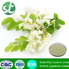 High Quality natural plant extracts Rutin free sample|Sophora japonica extract