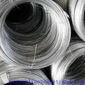 Eléctrico de alta calidad de alambre de hierro galvanizado( fabricante)