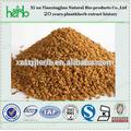 Alholva semillas p.E Común alholva extracto de semilla de, Alholva extracto y semillas 20% UV dioscin