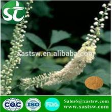 Natural Black Cohosh Extraction Powder