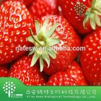 Natural Water-soluble Strawberry Juice Powder/ Fragaria ananassa Duchesne