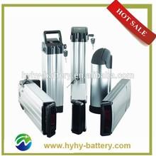 OEM lithium 48 volt ebike battery