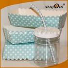 Cake Cookie Jars Plastic Mason Style Jars BPA Free