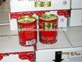 2014 المحصول الجديد معجون الطماطم في القصدير/ يمكن 70g إلى دبي
