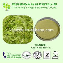 Green Tea Extract, Green Tea Extract Powder, Green Tea Extract 98%